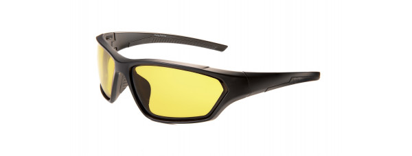 Очки PROFI-PHOTOCHROMIC FSF02 Y