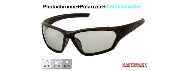 Очки PROFI-PHOTOCHROMIC FSF02 Grey+asw