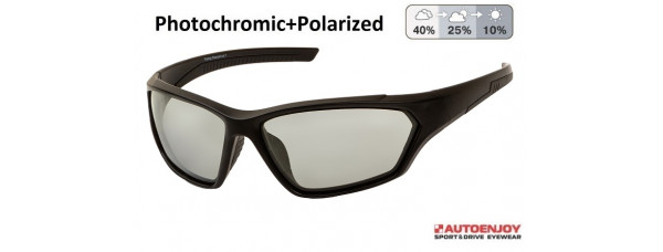 Очки PROFI-PHOTOCHROMIC FSF02 Grey